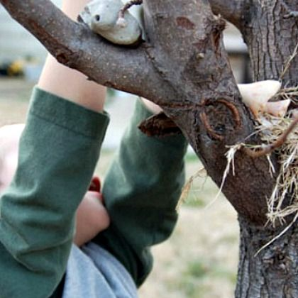 building-nests-in-tree-kab, nest-hunting activity, fun family spring activities, activities in spring
