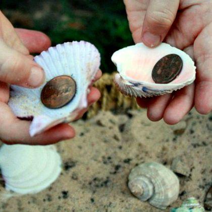 hidden-objects-in-shells