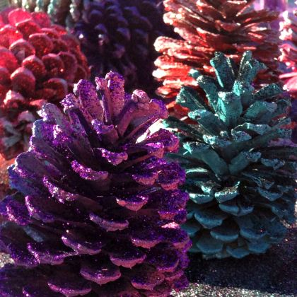 pinecone square