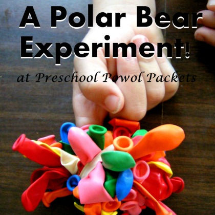 polar bear experiment