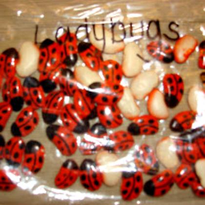 lady bug lima beans