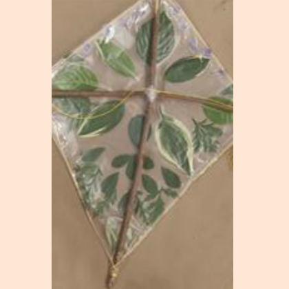 outdoor kite