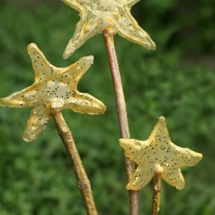 easy fairy wands