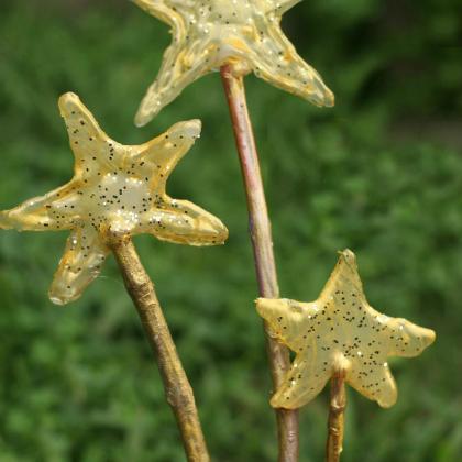 easy fairy wands
