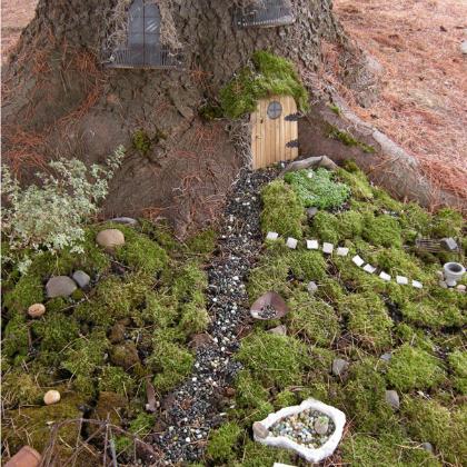 tree fairy garden