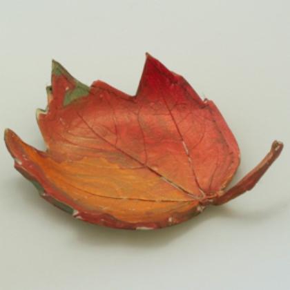 Clay leaf imprint
