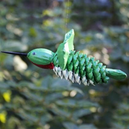 hummingbird pinecone