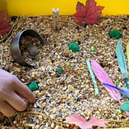 Autumn Bird Seed Fun (Chaos and the Clutter)