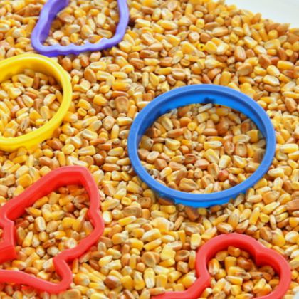 Corn and Cookie Cutters (Sugar Aunts)