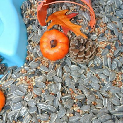 Fall Sensory Table (Frog, Snails, and Puppy Dog Tails)