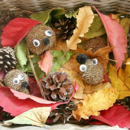 Hedgehog Hibernation (The Imagination Tree)