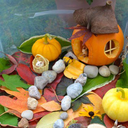 Little Pumpkin House (Adventures in a Box)