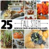 25 Fall STEM Ideas for Kids