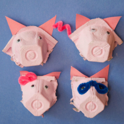 pig noses and faces