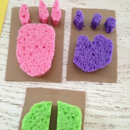 sponge animal tracks