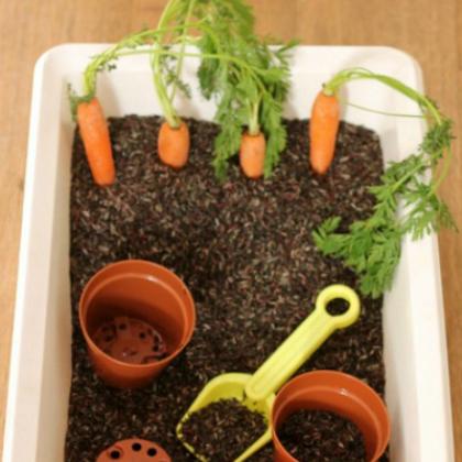 carrot sensory bin