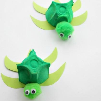 Egg-Box-Turtle