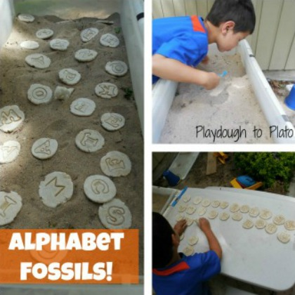 alphabet fossils