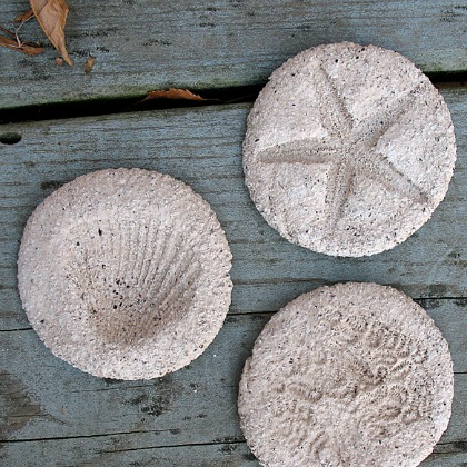 coffee ground fossils