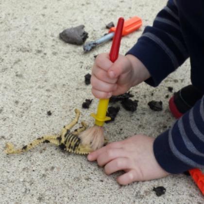 dinosaur fossil excavating